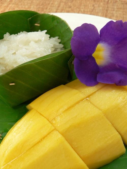 Kokosmælk, Mango, Duftvoks med kokos og mango