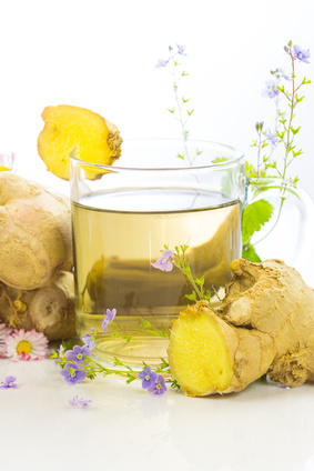 Image of   White Tea & Ginger