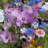 Duftlys med blomsterduft