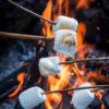 Soyalys, duftlys med bål, duftlys med træd duftlys med marshmellows
