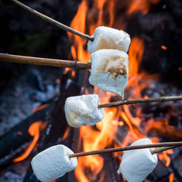Image of   Bonfired Marshmallow